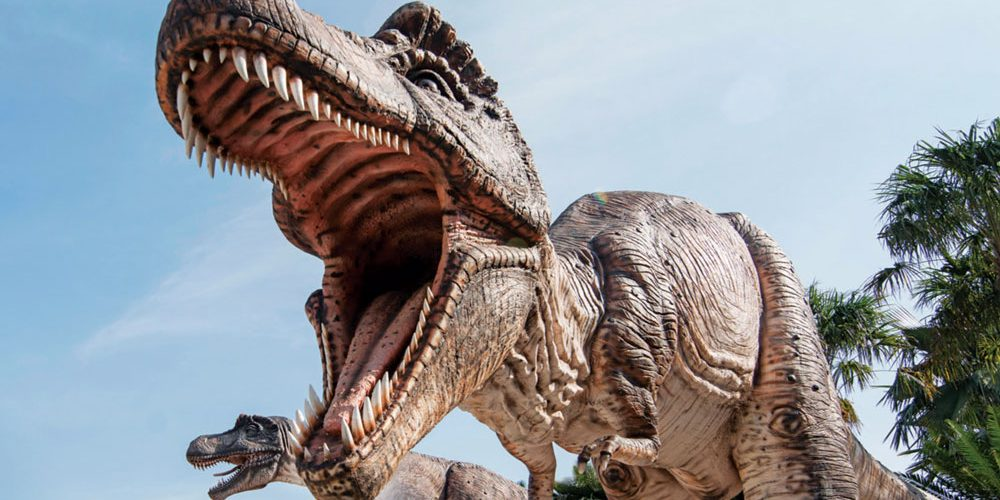 Dinosaur Valley – History for the Modern Age