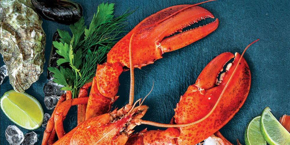 Seafood Special – Delivered Fresh from the Sea