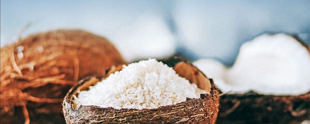 the Coconut – Discover the Taste of Paradise